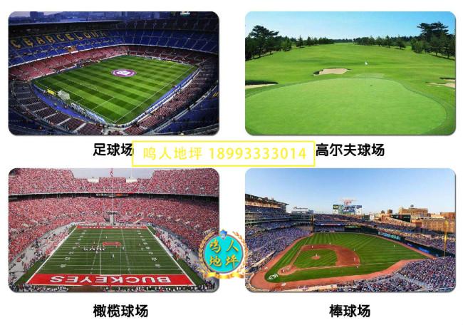 球场运动草坪施工案例
